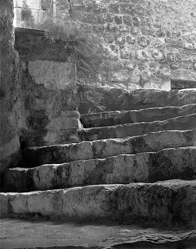 MED00-033-Stairs-St-Paul-de-Vance.jpg
